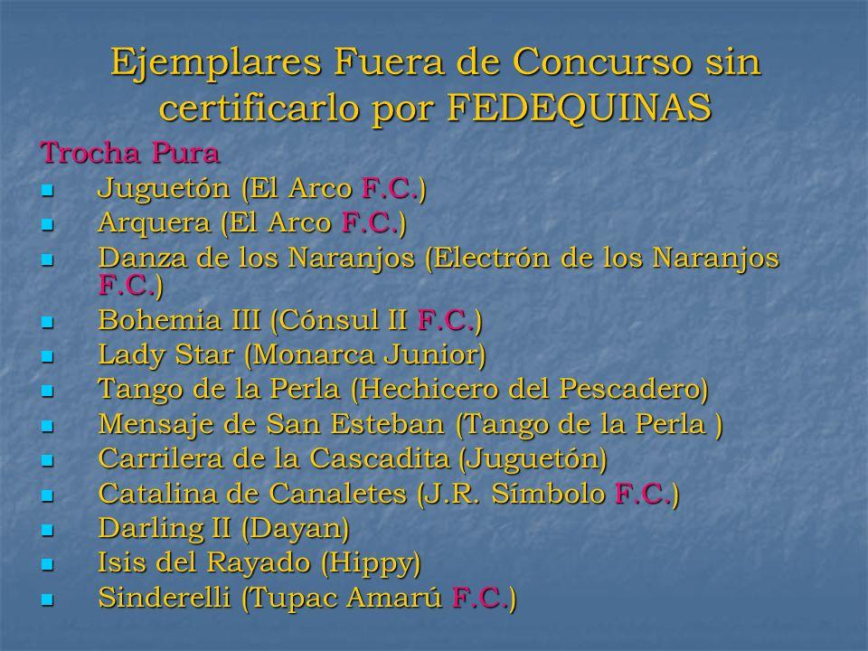 Ejemplares Fuera de Concurso sin certificarlo por FEDEQUINAS Trocha Pura Juguetón (El Arco F.C.) Juguetón (El Arco F.C.) Arquera (El Arco F.C.) Arquer