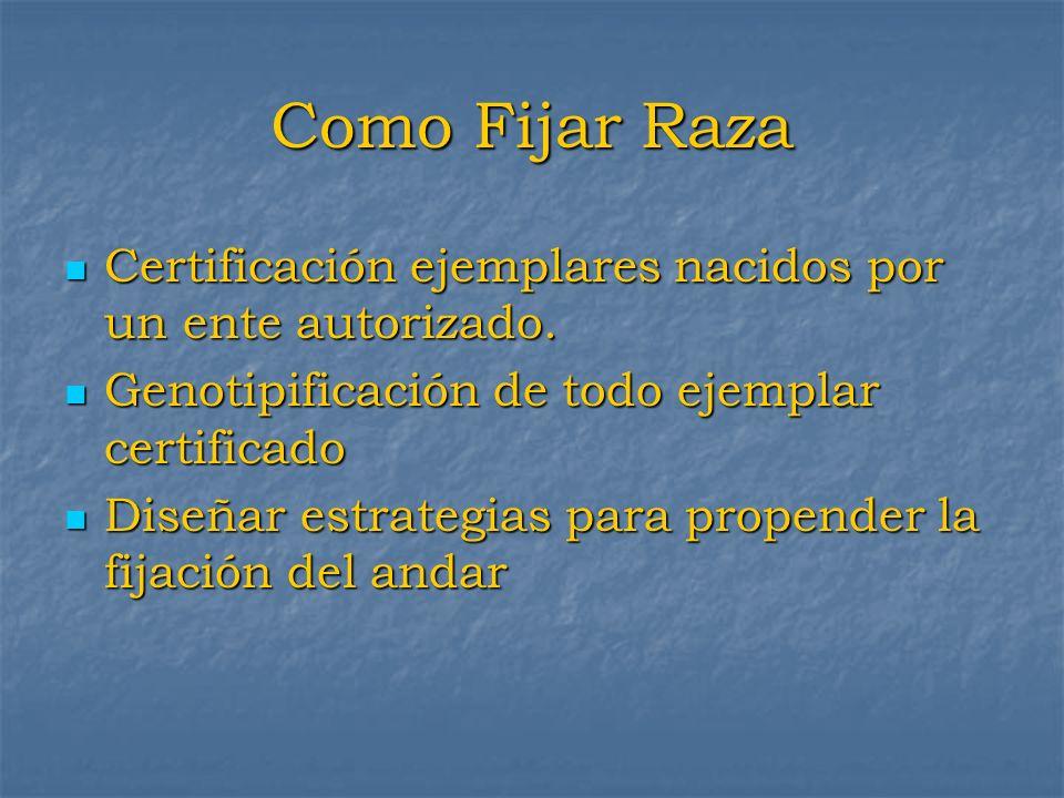 Como Fijar Raza Certificación ejemplares nacidos por un ente autorizado. Certificación ejemplares nacidos por un ente autorizado. Genotipificación de