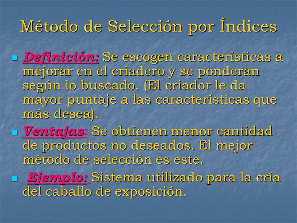 Método de Selección por Índices Definición: Se escogen características a mejorar en el criadero y se ponderan según lo buscado. (El criador le da mayo