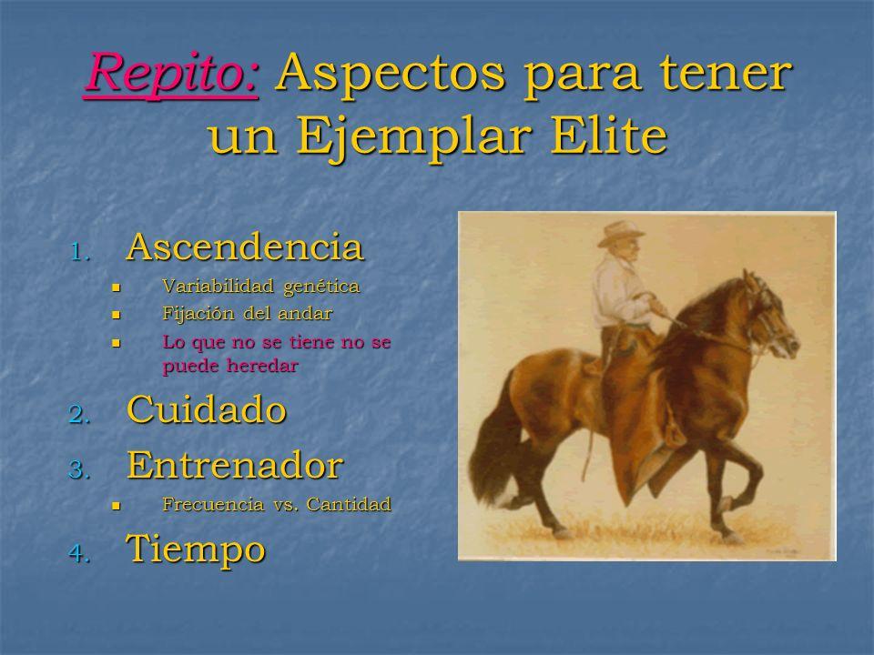 Repito: Aspectos para tener un Ejemplar Elite 1. Ascendencia Variabilidad genética Variabilidad genética Fijación del andar Fijación del andar Lo que