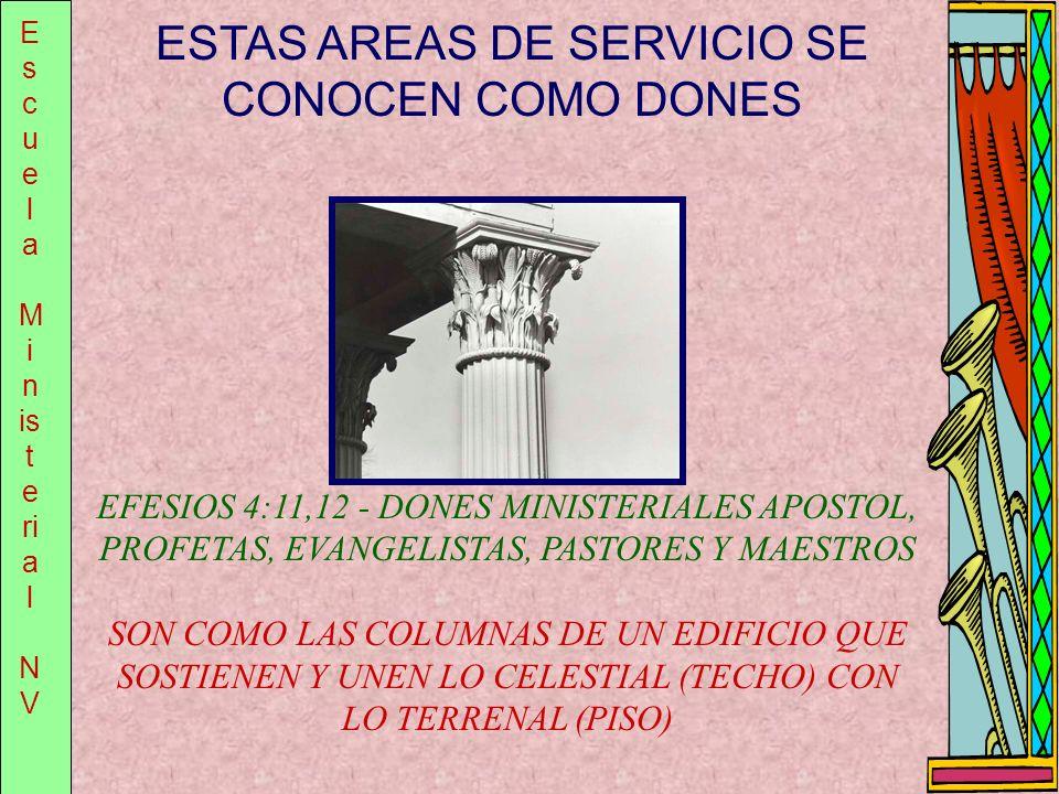 E s c u e l a M i n is t e ri a l N V ESTAS AREAS DE SERVICIO SE CONOCEN COMO DONES EFESIOS 4:11,12 - DONES MINISTERIALES APOSTOL, PROFETAS, EVANGELIS