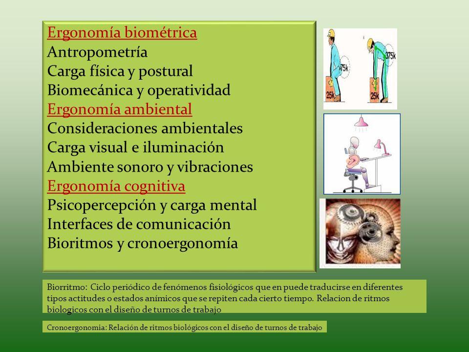 Ergonomía biométrica Antropometría Carga física y postural Biomecánica y operatividad Ergonomía ambiental Consideraciones ambientales Carga visual e i