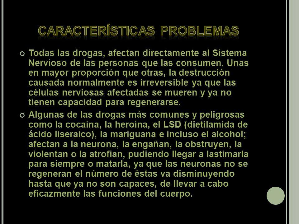 Todas las drogas, afectan directamente al Sistema Nervioso de las personas que las consumen.