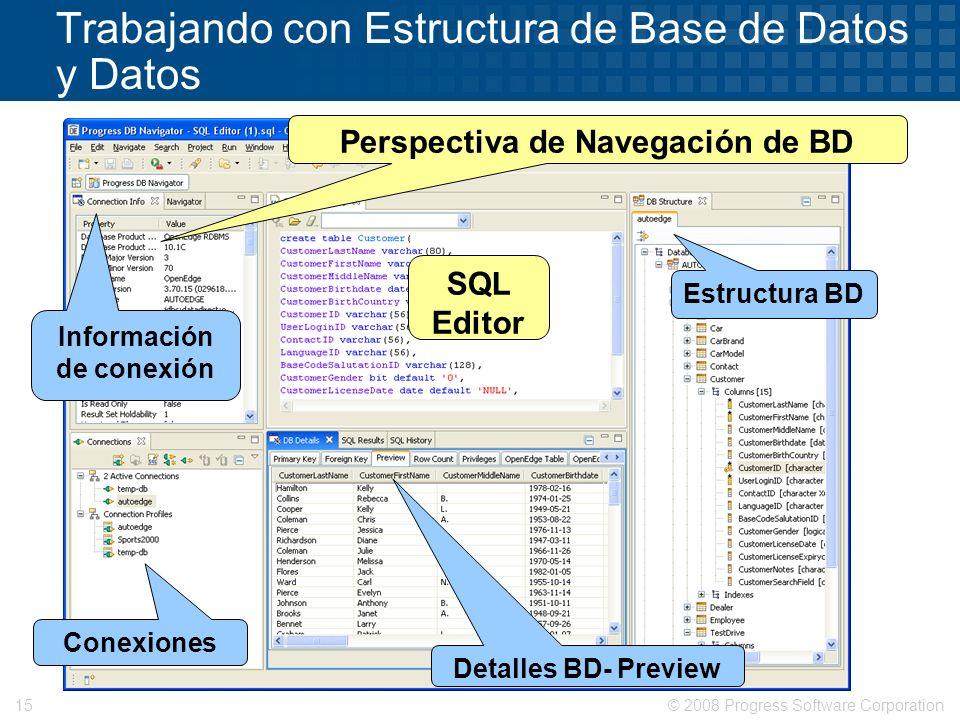 © 2008 Progress Software Corporation15 Trabajando con Estructura de Base de Datos y Datos Detalles BD- Preview Estructura BD Perspectiva de Navegación