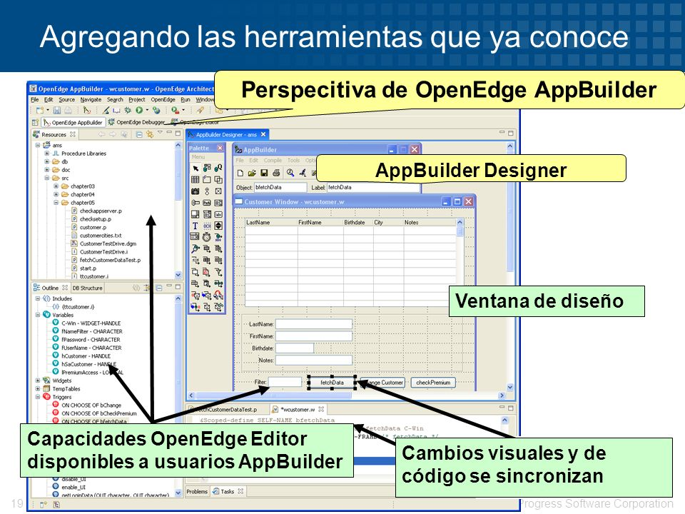 © 2008 Progress Software Corporation19 Agregando las herramientas que ya conoce Perspecitiva de OpenEdge AppBuilder Capacidades OpenEdge Editor dispon
