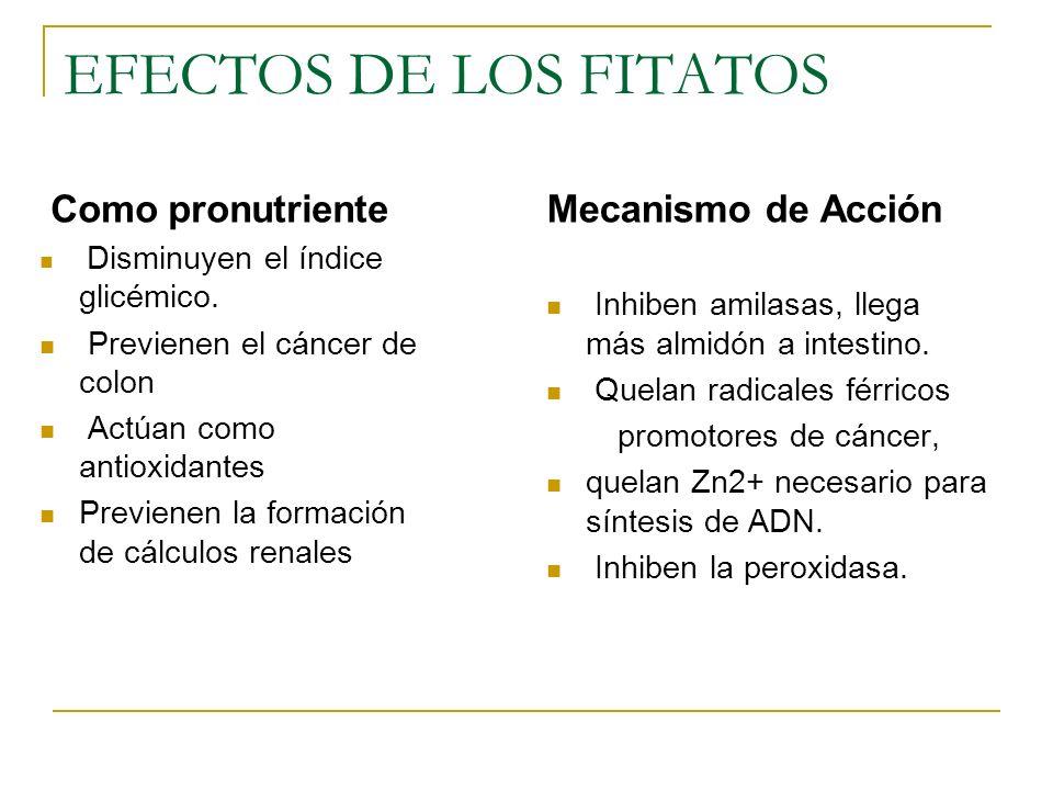 EFECTOS DE LOS FITATOS Como pronutriente Disminuyen el índice glicémico. Previenen el cáncer de colon Actúan como antioxidantes Previenen la formación