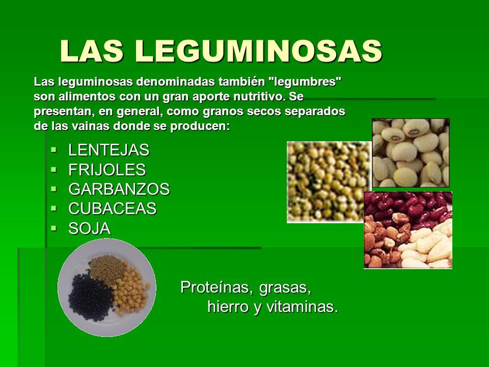 LAS LEGUMINOSAS LAS LEGUMINOSAS LENTEJAS LENTEJAS FRIJOLES FRIJOLES GARBANZOS GARBANZOS CUBACEAS CUBACEAS SOJA SOJA Proteínas, grasas, Proteínas, gras