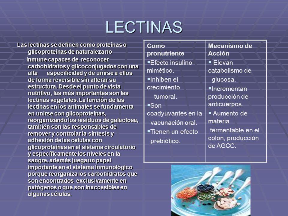LECTINAS Las lectinas se definen como proteínas o glicoproteínas de naturaleza no inmune capaces de reconocer carbohidratos y glicoconjugados con una