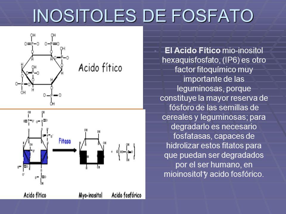 INOSITOLES DE FOSFATO El Acido Fítico mio-inositol hexaquisfosfato, (IP6) es otro factor fitoquímico muy importante de las leguminosas, porque constit