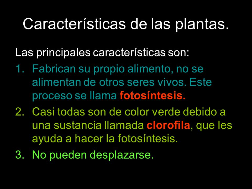 Características de las plantas. Las principales características son: 1.Fabrican su propio alimento, no se alimentan de otros seres vivos. Este proceso