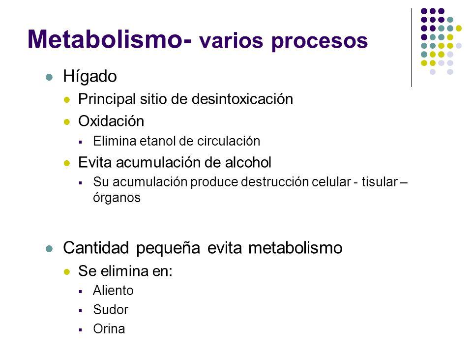 Metabolismo- varios procesos Hígado Principal sitio de desintoxicación Oxidación Elimina etanol de circulación Evita acumulación de alcohol Su acumula