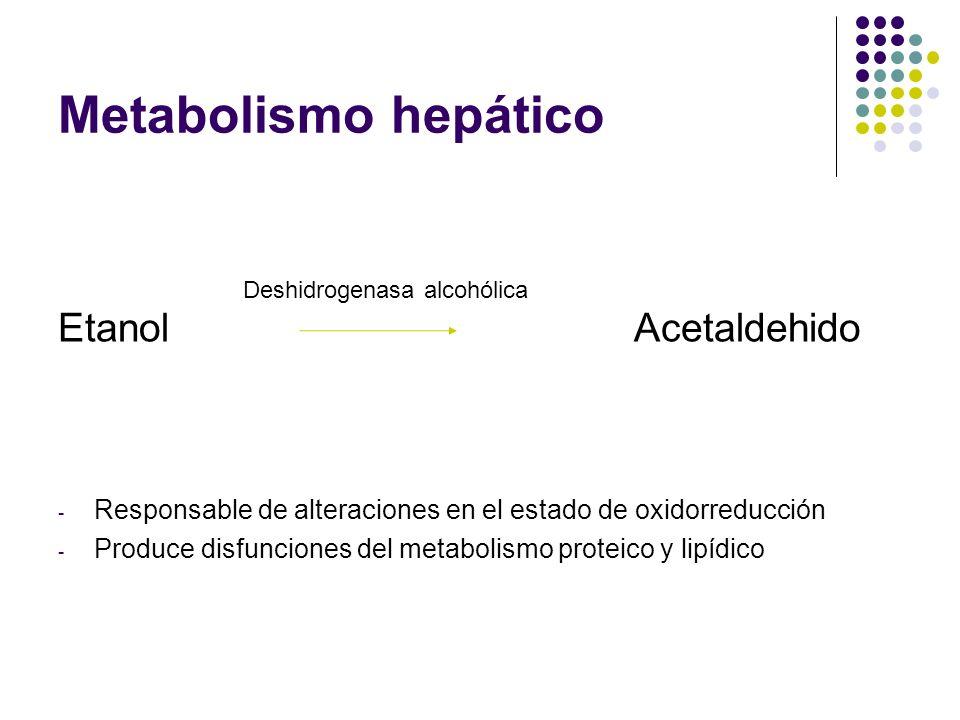 Metabolismo hepático Etanol Acetaldehido - Responsable de alteraciones en el estado de oxidorreducción - Produce disfunciones del metabolismo proteico