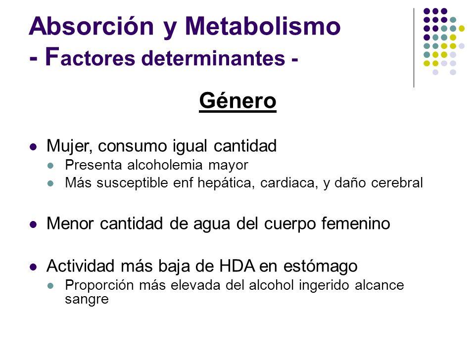 Absorción y Metabolismo - F actores determinantes - Género Mujer, consumo igual cantidad Presenta alcoholemia mayor Más susceptible enf hepática, card