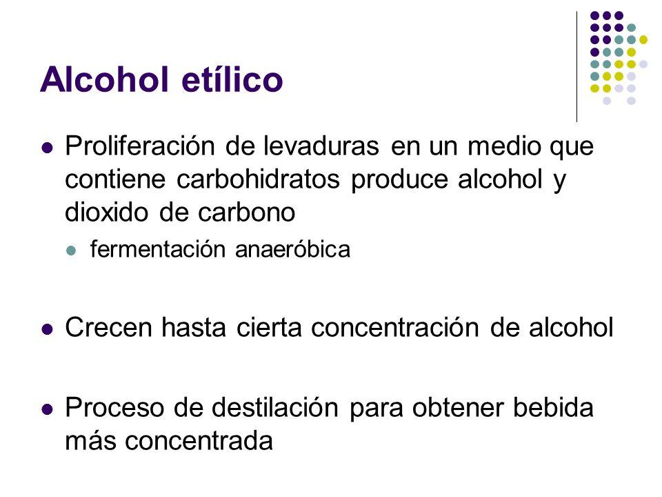 Alcohol etílico Proliferación de levaduras en un medio que contiene carbohidratos produce alcohol y dioxido de carbono fermentación anaeróbica Crecen