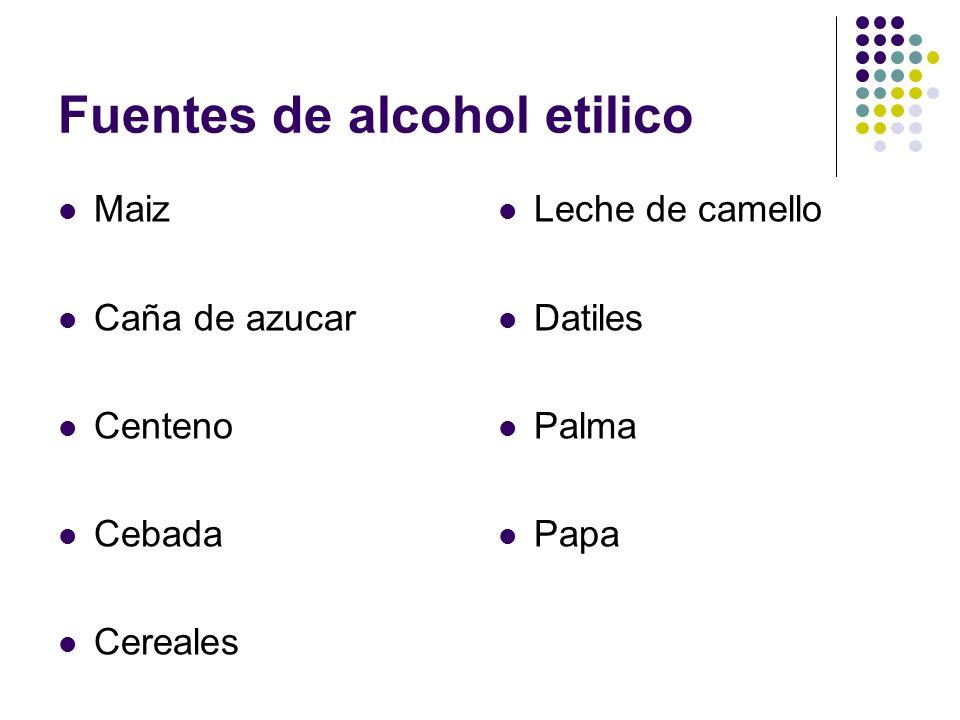 Fuentes de alcohol etilico Maiz Caña de azucar Centeno Cebada Cereales Leche de camello Datiles Palma Papa