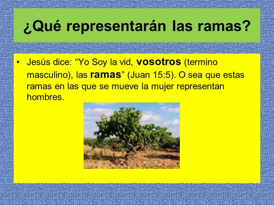 ¿Qué representarán las ramas? Jesús dice: Yo Soy la vid, vosotros (termino masculino), las ramas (Juan 15:5). O sea que estas ramas en las que se muev