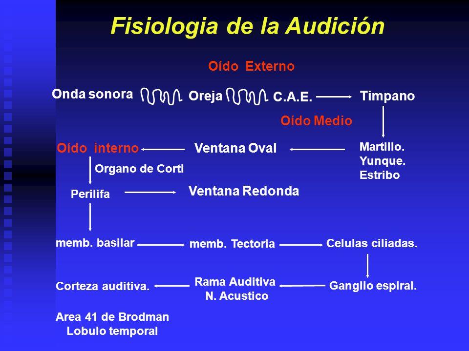 FISIOLOGIA DE LA AUDICION El sonido entra al oído por el canal auditivo externo y hace que la membrana del tímpano vibre.