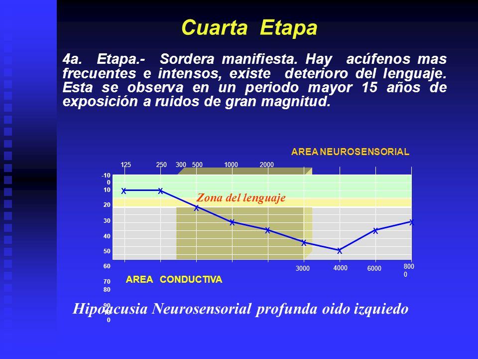 1252505001000200040008000 30006000 -10 0 10 20 30 40 50 60 70 80 90 10 0 INDICE DE FLESHERT La suma de las frecuencias, para cada oído: 500,1000, 2000, y 3000, X.8 = 4 El mejor oído X 7 + el peor oído = H.B.C.