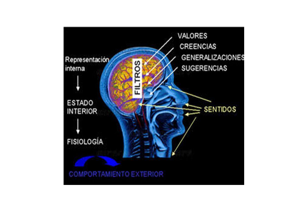 PNL parte de una experiencia sensorial específica almacenada en el cerebro. Lo importante para trabajar con ella, es conocer la estructura y las condi
