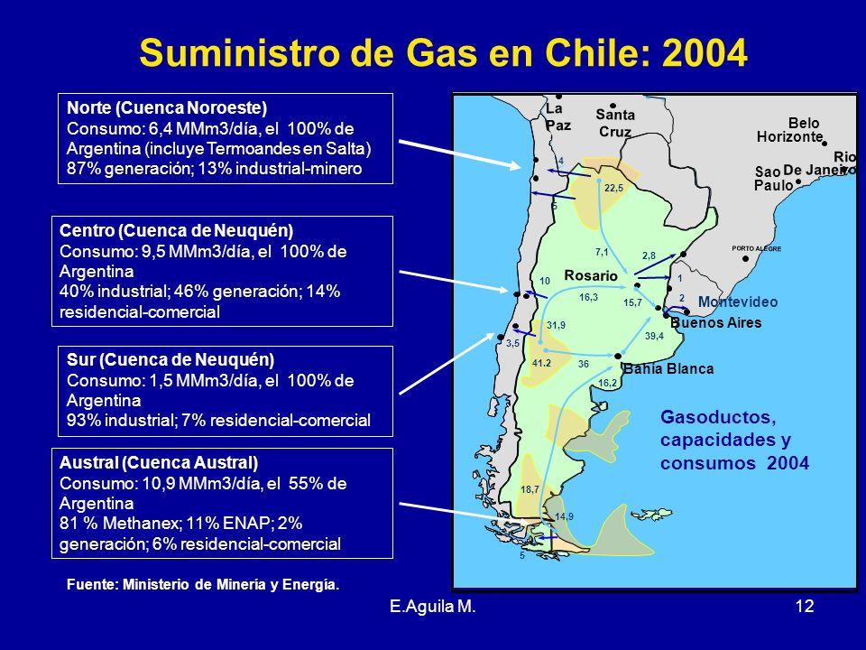 E.Aguila M.12 Suministro de Gas en Chile: 2004 Norte (Cuenca Noroeste) Consumo: 6,4 MMm3/día, el 100% de Argentina (incluye Termoandes en Salta) 87% g