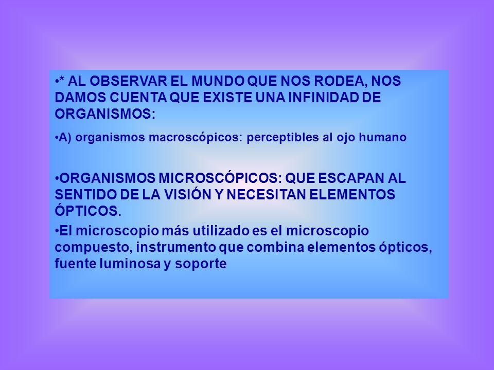 * AL OBSERVAR EL MUNDO QUE NOS RODEA, NOS DAMOS CUENTA QUE EXISTE UNA INFINIDAD DE ORGANISMOS: A) organismos macroscópicos: perceptibles al ojo humano