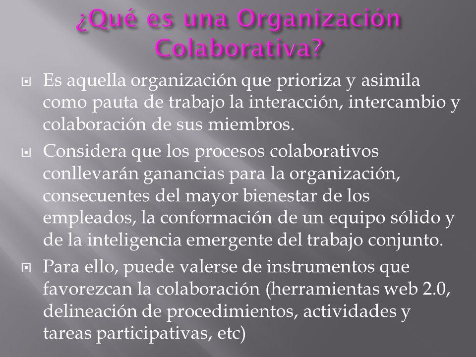 Es aquella organización que prioriza y asimila como pauta de trabajo la interacción, intercambio y colaboración de sus miembros. Considera que los pro