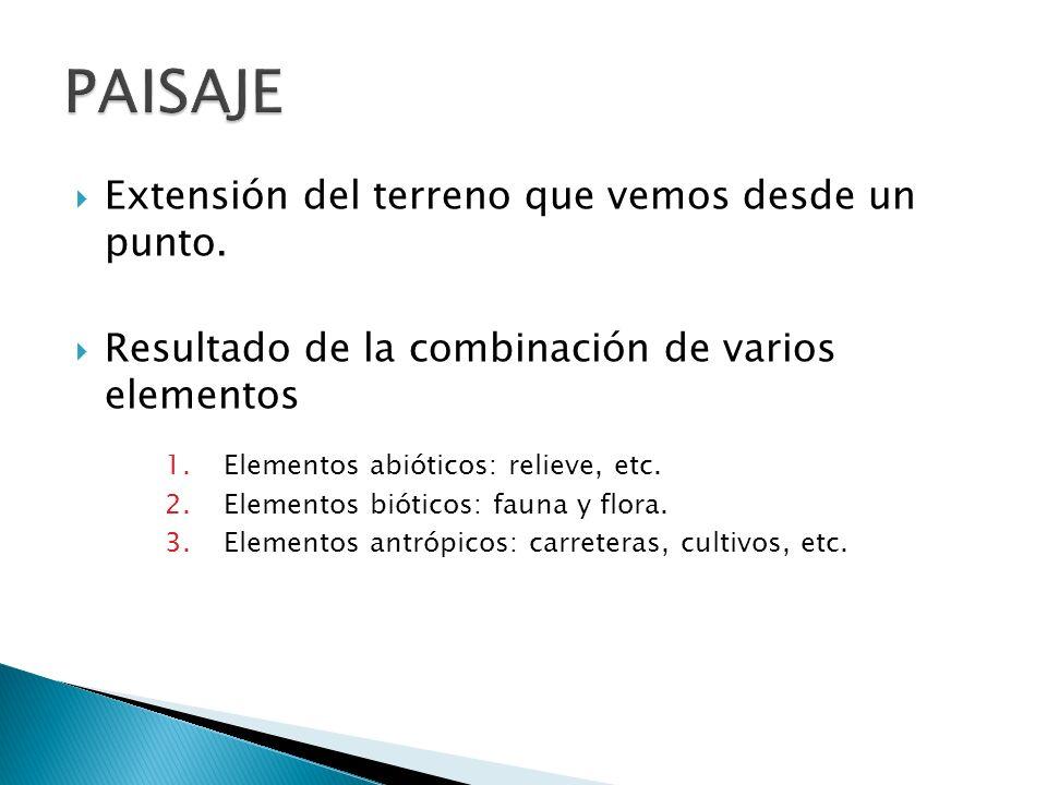 FACTORES CONDICIONANTES DEL MODELADO I.