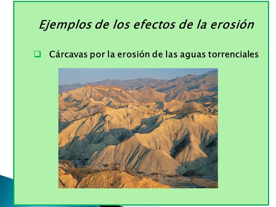 Ejemplos de los efectos de la erosión Cárcavas por la erosión de las aguas torrenciales