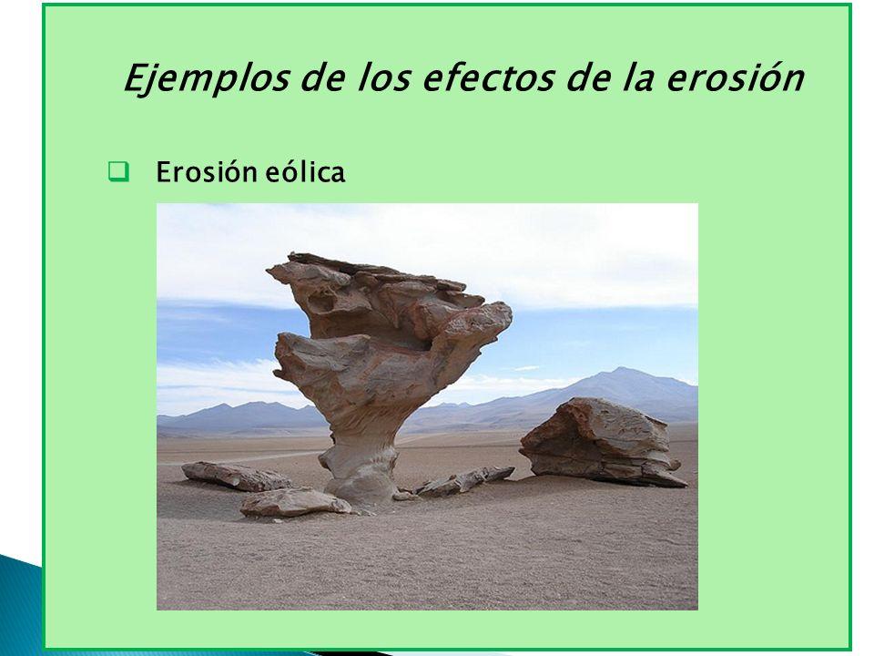 Ejemplos de los efectos de la erosión Erosión eólica