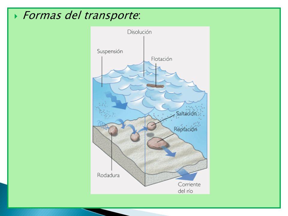 Formas del transporte: