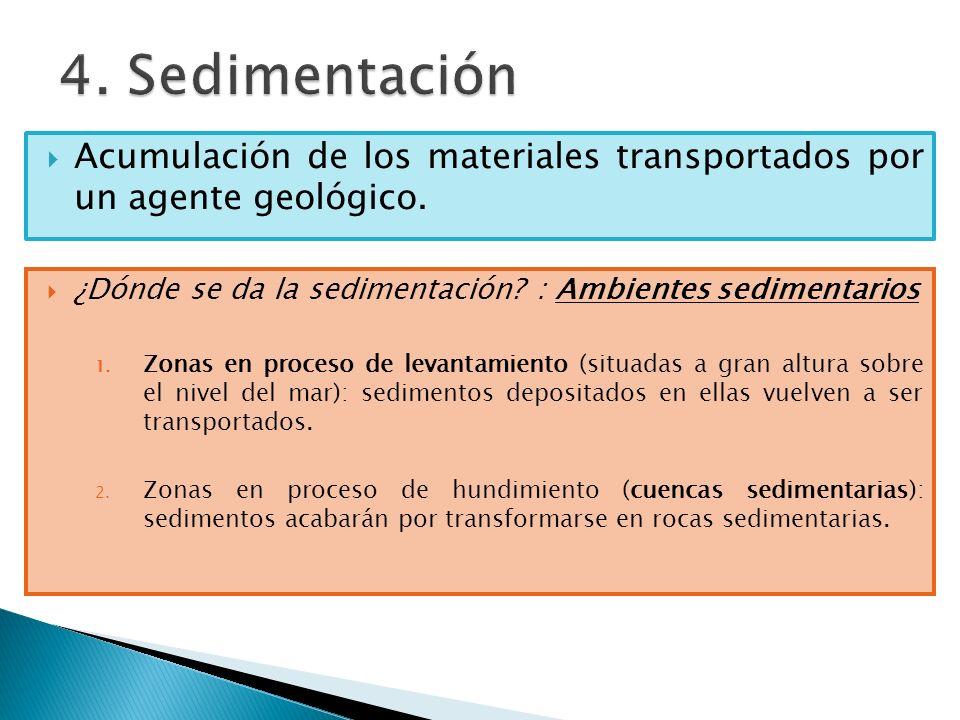 Acumulación de los materiales transportados por un agente geológico. ¿Dónde se da la sedimentación? : Ambientes sedimentarios 1. Zonas en proceso de l
