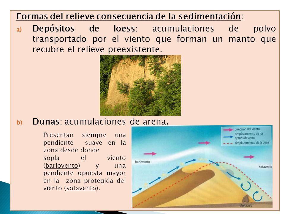 Formas del relieve consecuencia de la sedimentación: a) Depósitos de loess: acumulaciones de polvo transportado por el viento que forman un manto que