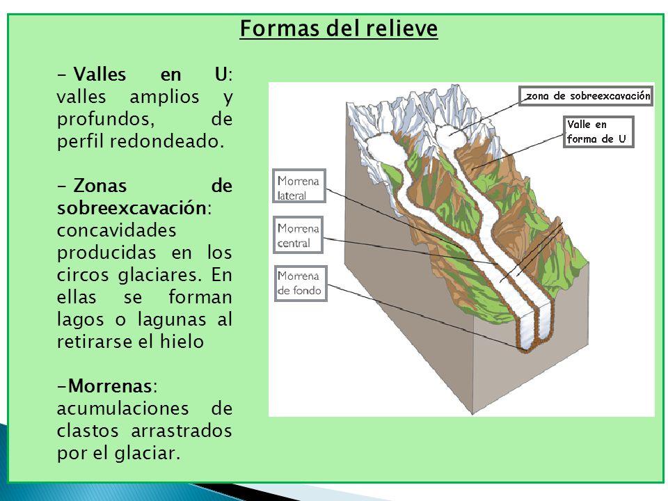 Formas del relieve - Valles en U: valles amplios y profundos, de perfil redondeado. - Zonas de sobreexcavación: concavidades producidas en los circos