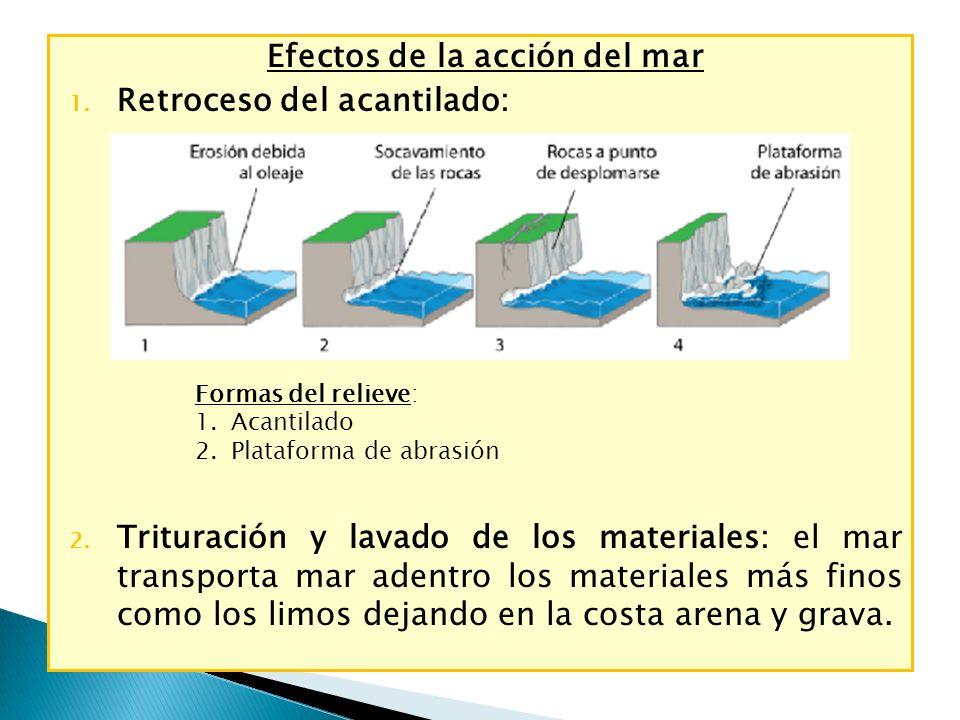 Efectos de la acción del mar 1. Retroceso del acantilado: 2. Trituración y lavado de los materiales: el mar transporta mar adentro los materiales más