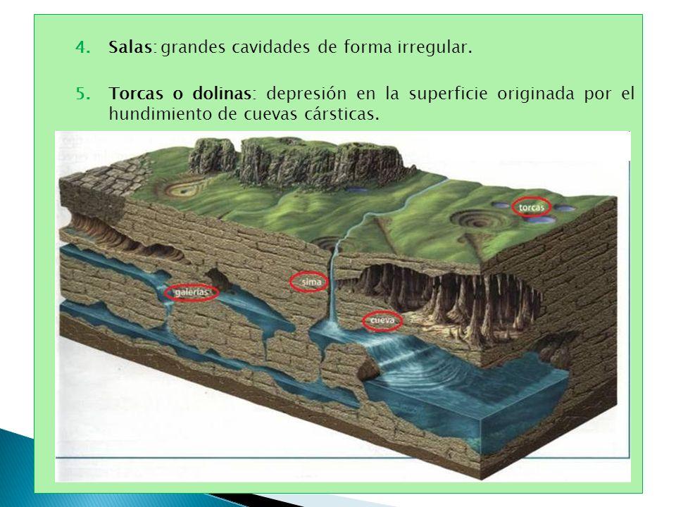 4.Salas: grandes cavidades de forma irregular. 5.Torcas o dolinas: depresión en la superficie originada por el hundimiento de cuevas cársticas.