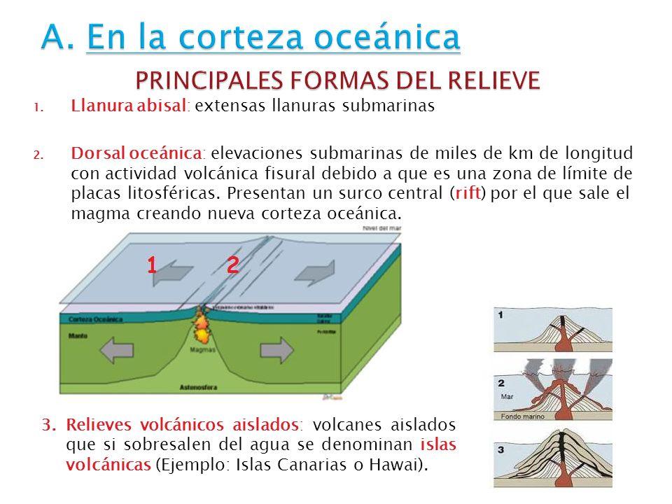 1. Llanura abisal: extensas llanuras submarinas 2. Dorsal oceánica: elevaciones submarinas de miles de km de longitud con actividad volcánica fisural
