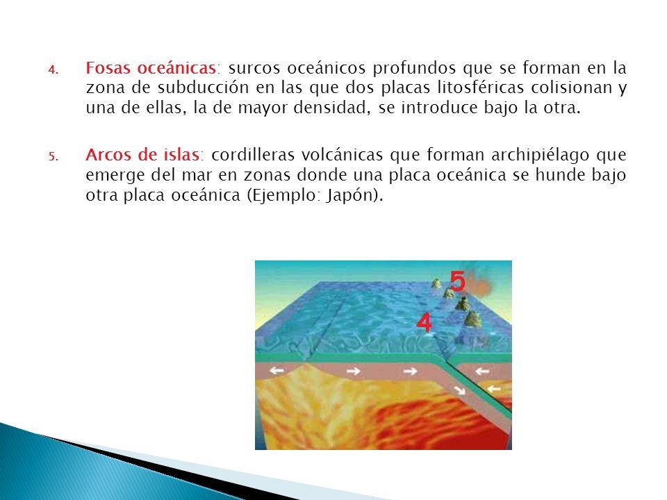 4. Fosas oceánicas: surcos oceánicos profundos que se forman en la zona de subducción en las que dos placas litosféricas colisionan y una de ellas, la