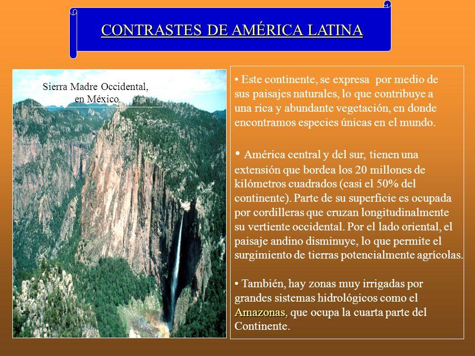 CONTRASTES DE AMÉRICA LATINA Este continente, se expresa por medio de sus paisajes naturales, lo que contribuye a una rica y abundante vegetación, en