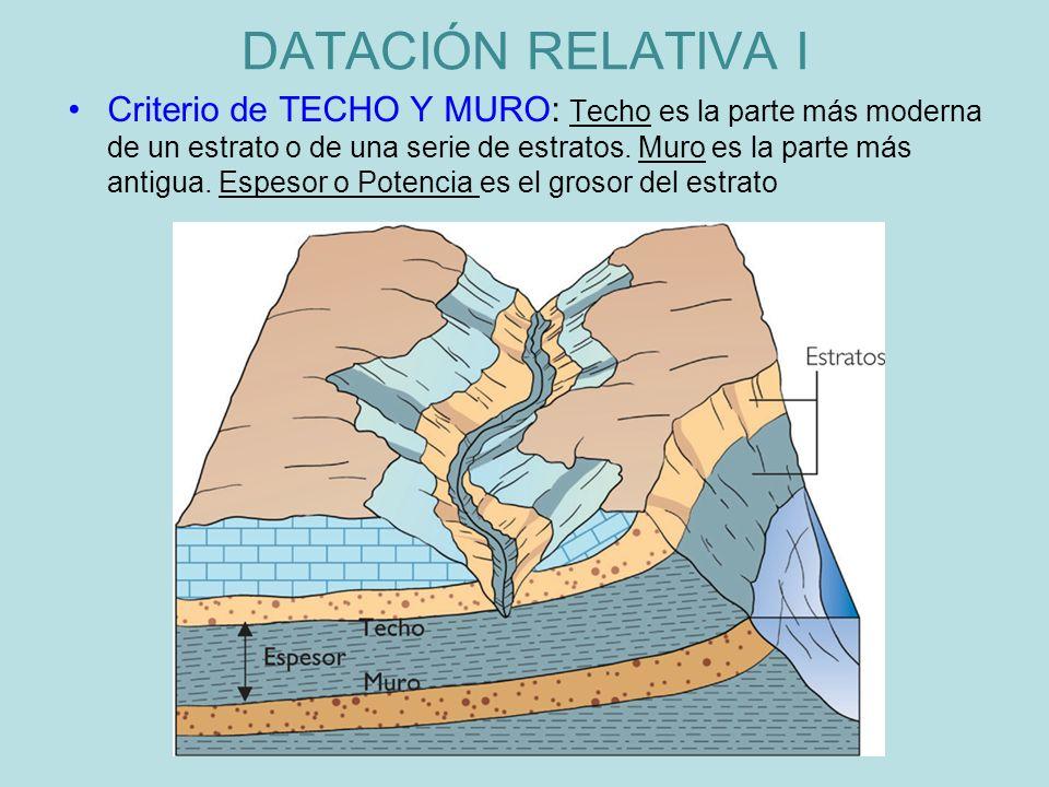 Criterio de TECHO Y MURO: Techo es la parte más moderna de un estrato o de una serie de estratos. Muro es la parte más antigua. Espesor o Potencia es