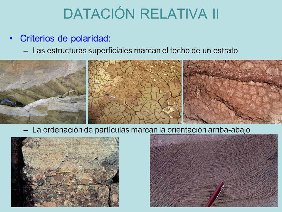 Criterios de polaridad: –Las estructuras superficiales marcan el techo de un estrato. –La ordenación de partículas marcan la orientación arriba-abajo
