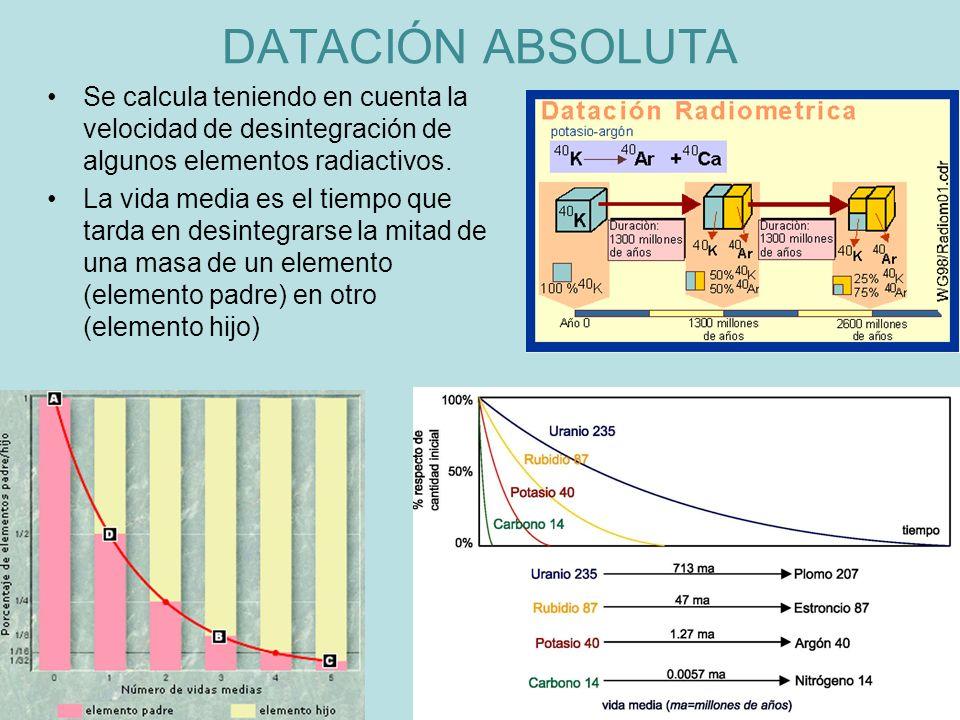 Se calcula teniendo en cuenta la velocidad de desintegración de algunos elementos radiactivos. La vida media es el tiempo que tarda en desintegrarse l