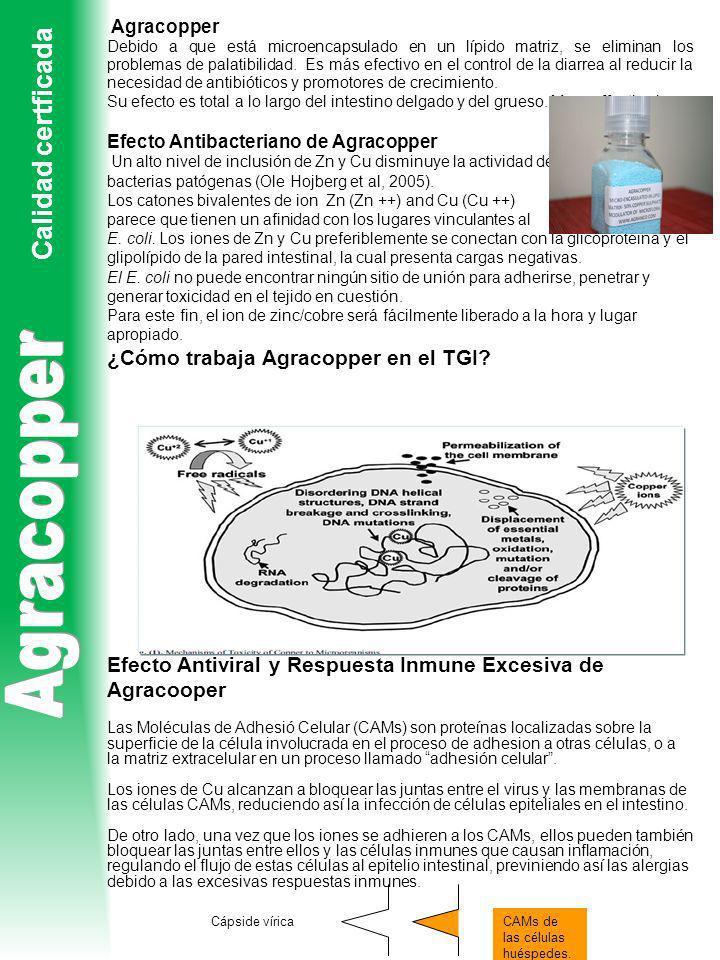 Agracopper Debido a que está microencapsulado en un lípido matriz, se eliminan los problemas de palatibilidad. Es más efectivo en el control de la dia