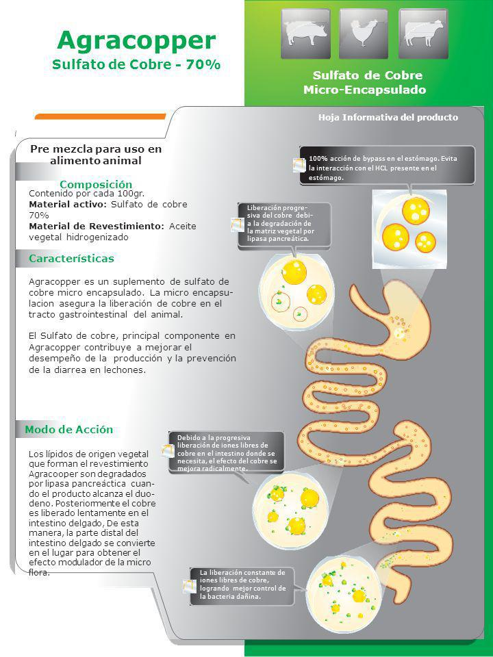 Pre mezcla para uso en alimento animal Composición Contenido por cada 100gr. Material activo: Sulfato de cobre 70% Material de Revestimiento: Aceite v