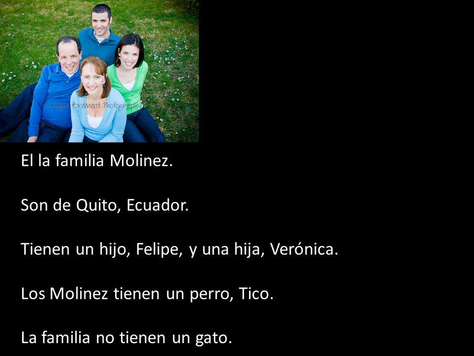 El la familia Molinez. Son de Quito, Ecuador. Tienen un hijo, Felipe, y una hija, Verónica. Los Molinez tienen un perro, Tico. La familia no tienen un