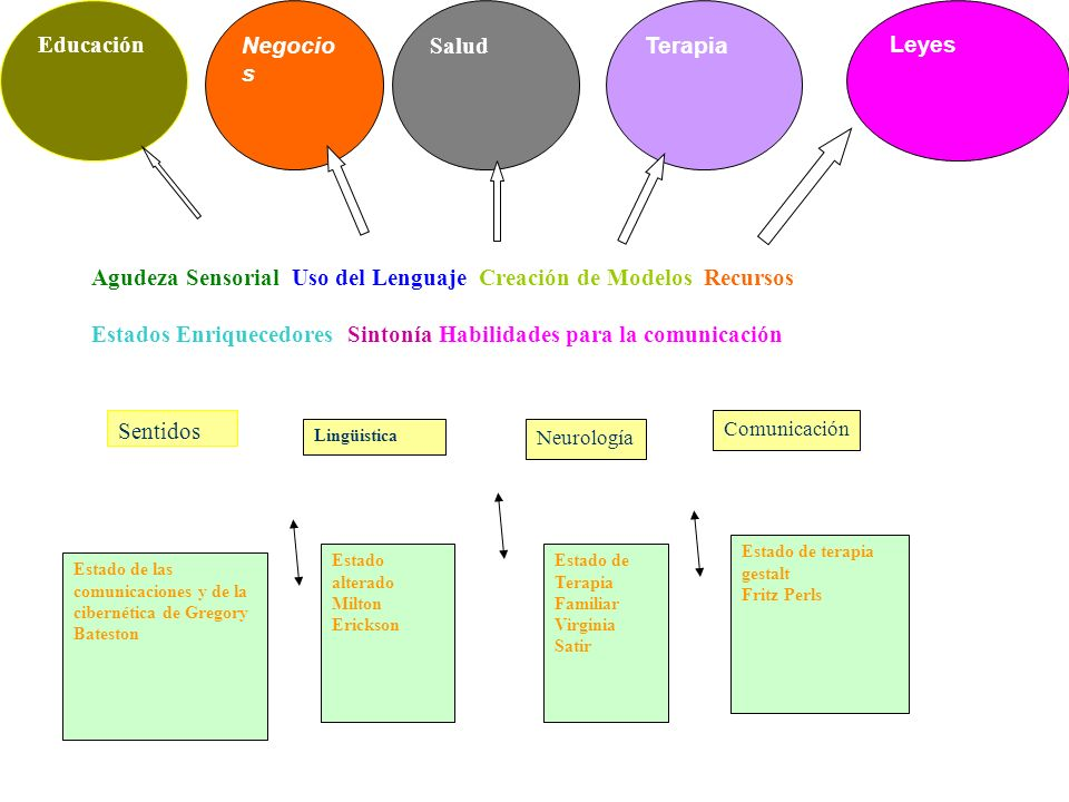 Educación Negocio s Salud Terapia Leyes Lingüistica Neurología Comunicación Sentidos Agudeza Sensorial Uso del Lenguaje Creación de Modelos Recursos E