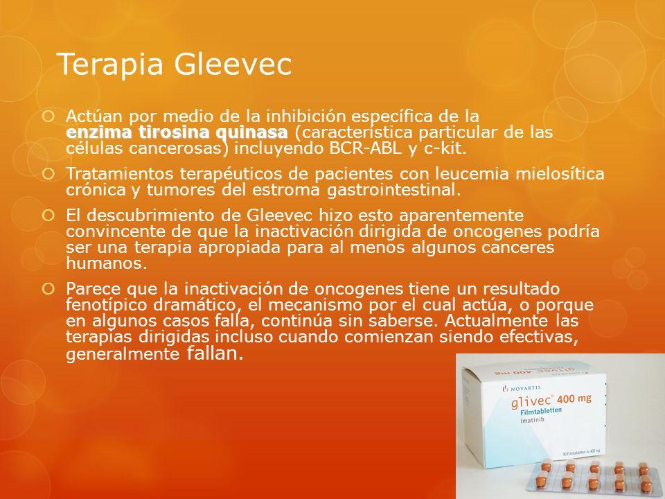 Terapia Gleevec enzima tirosina quinasa Actúan por medio de la inhibición específica de la enzima tirosina quinasa (característica particular de las c