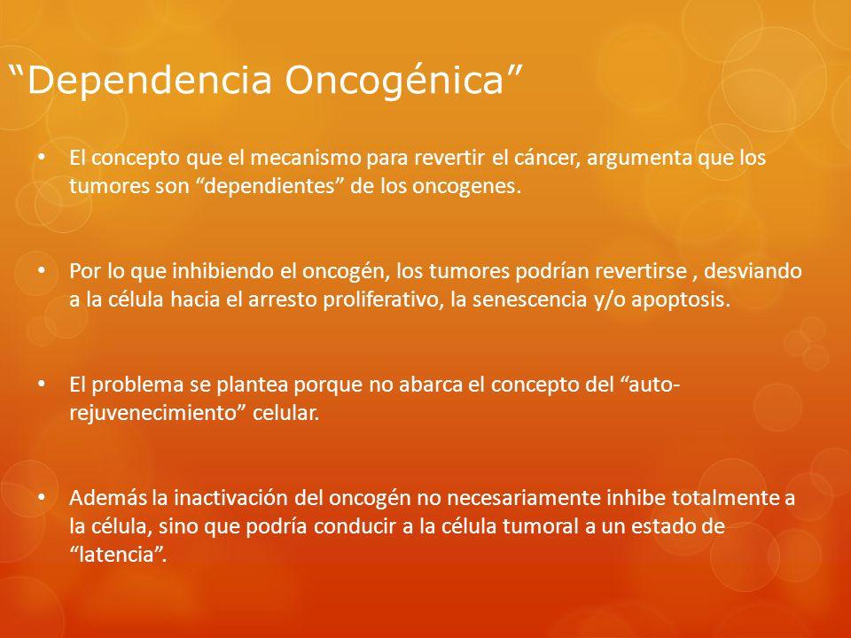 Dependencia Oncogénica El concepto que el mecanismo para revertir el cáncer, argumenta que los tumores son dependientes de los oncogenes. Por lo que i