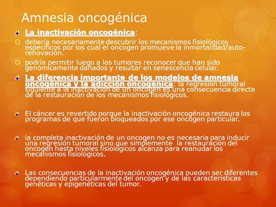 Amnesia oncogénica La inactivación oncogénica La inactivación oncogénica : debería necesariamente descubrir los mecanismos fisiológicos específicos po