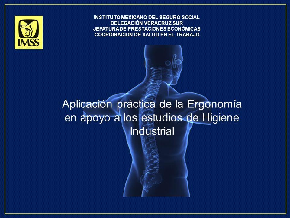 En las sociedades industriales modernas las lesiones de tipo Musculo esquelético debido tanto al manejo de cargas como los micro traumatismos de tipo acumulativo, están adquiriendo una importancia relevante.