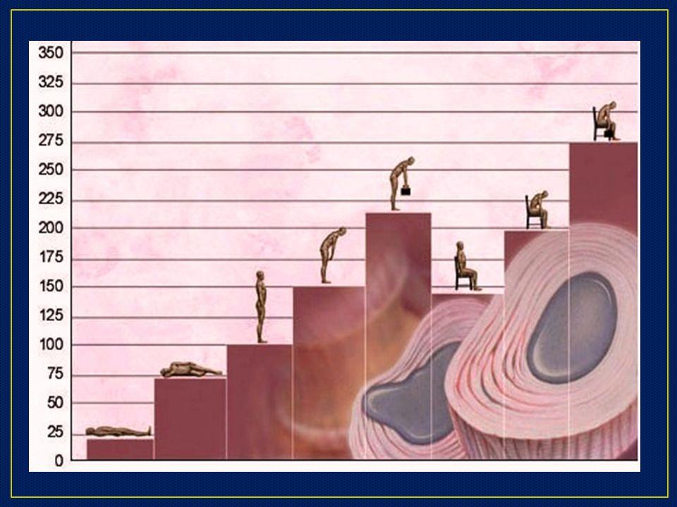 3.- Congruencia entre la exposición al factor de riesgo y la latencia suficiente para el desarrollo de la misma 4.- No existe mecanismo de accidente, es decir no es de aparición súbita.